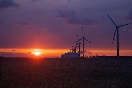 windmill08