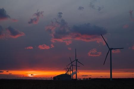 windmill09