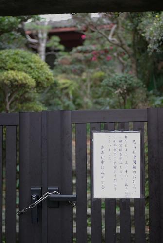 Ryoma02